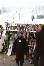Какие бы лыжи выбрать?