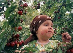Полина и вишня