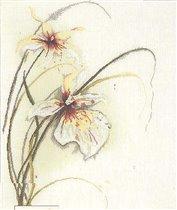 Орхидеи (Lanarte)