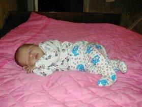 Спящая клясавица