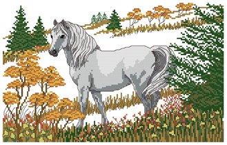 Wild Horse (Дикая лошадь)