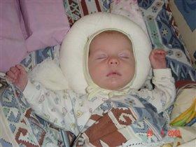 спящий красавец :)