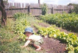 На прополке огорода
