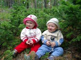 Лес, и мы в лесу
