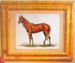 bo.horse 1