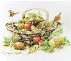 Lanarte - Summer Fruit