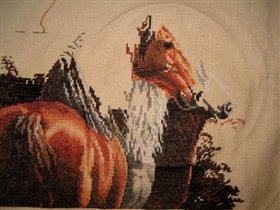 Трио лошадок