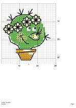 cactus chart