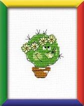 cactus RTO