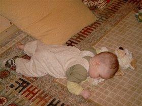 Сон на плюшевой собаке
