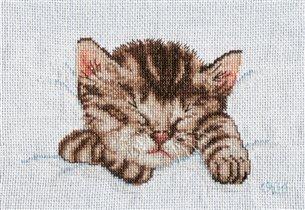 Спящий котенок ЕМС