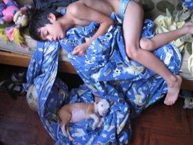 Спим, Алёша и Шарик...