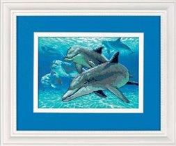 Дельфины(DIMENSIONS)