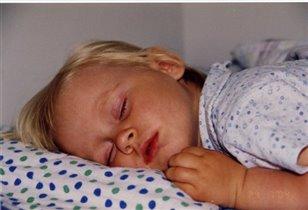 Спит, лапочка моя...