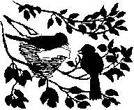 гнездо птиц 2