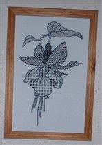 цветок фуксии