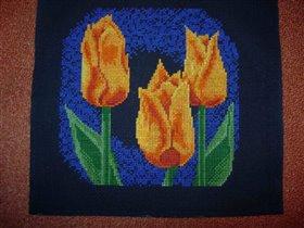 Тюльпаны от ЗР