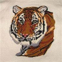 Мой любимый тигра