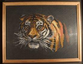 Тигр в ночи...