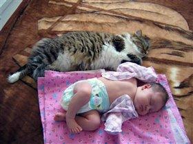 Киса наконец-то дождалась котёнка из роддома!