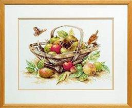 34261 Summer fruit