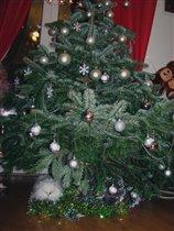 И елка, и кошка ЖИВЫЕ:_)))