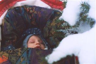 Сладкий сон под ёлкой
