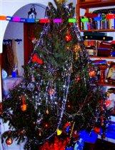 Римское Рождество-2005