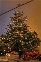 Jule tre