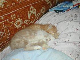 'Спят усталые игрушки....'