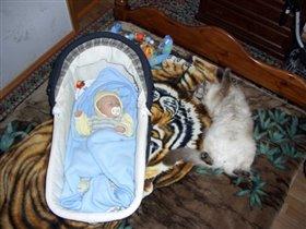 Мой маленький котенок , кот Васька и....