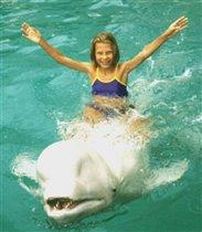 Море, дельфин и Я!