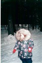Однажды в студеную зимнюю пору