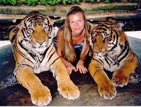 Тигры-это моя страсть!!!