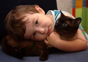 Мой ласковый и нежный зверь... Кот Митя :)