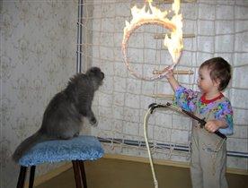 Двухлетний укротитель