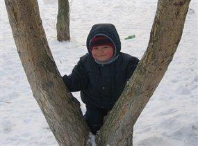 Люблю я лазить по деревьям :-)