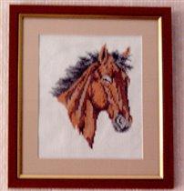 Horse Head_2