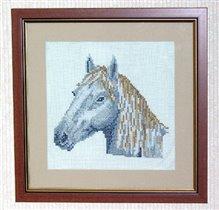 Horse Head_3