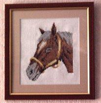 Horse Head_4