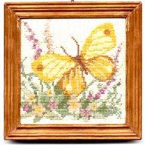 Motylki 1