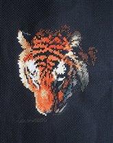 Отражение тигра