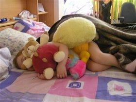 Спят усталые игрушки, книжки спят