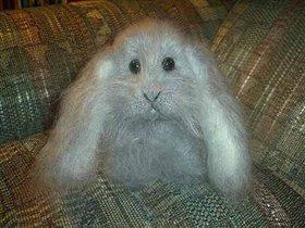 Кролик Пушок - вид спереди