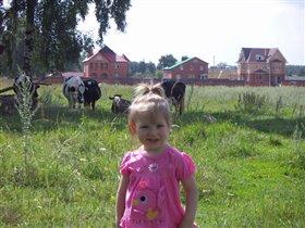 Дарья и её любимые коровки .