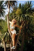 №5. Лазанье по пальмам