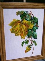 Желтая роза 2