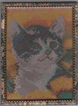 Котёнок в одуванчиках