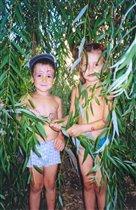 Дворовые джунгли