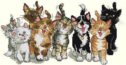 0001 Шкодные коты
